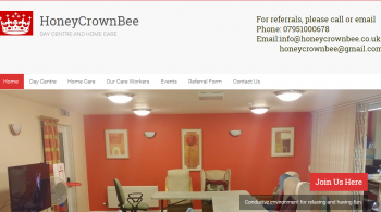 screenshot-honeycrownbee.co.uk 2016-06-07 00-52-27